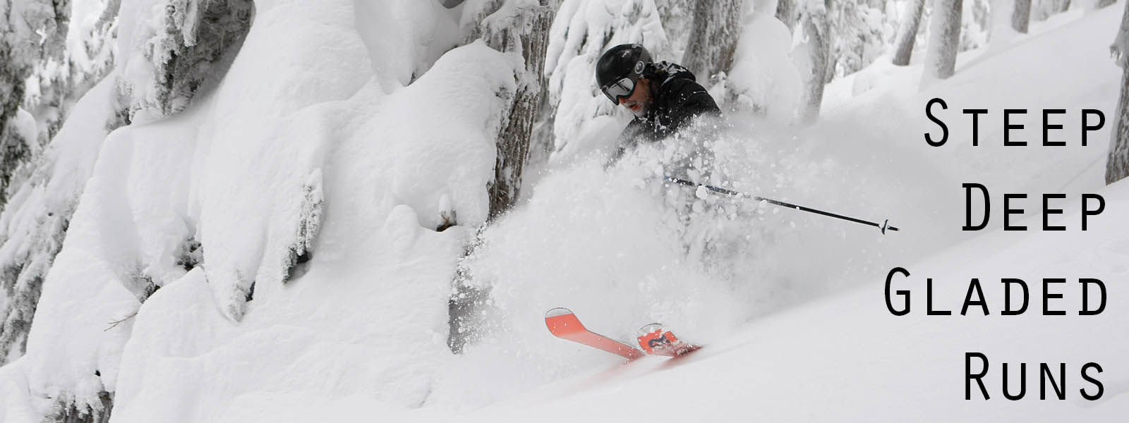 Backcountry Cat Ski Tours